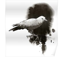 Crow In Ink Poster