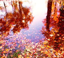 AUTUMN PUDDLE by THOR01