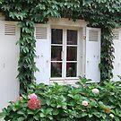 Window of France by DiamondCactus