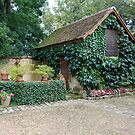 French Garden shed by DiamondCactus