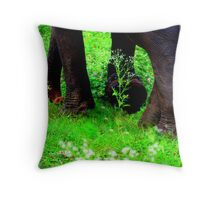 Every day is Earth Day. Throw Pillow