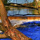 Sturgeon Falls by Larry Trupp