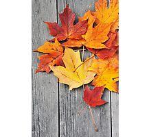 Autumn Beauty Photographic Print