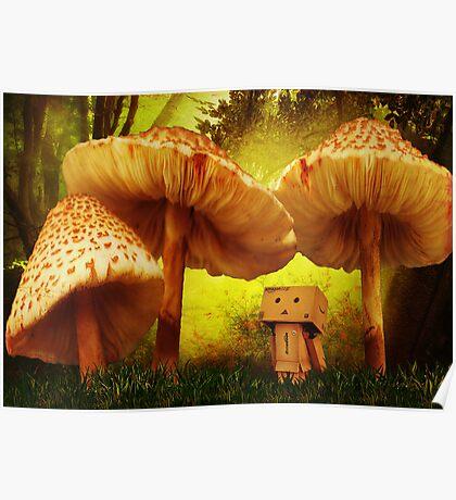 Danbo In Wonderland Poster