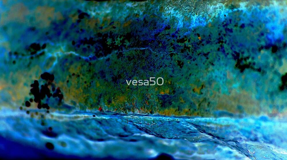 Building blocks of a river's morphology by vesa50