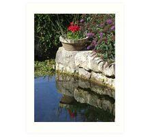 Garden Reflection Art Print
