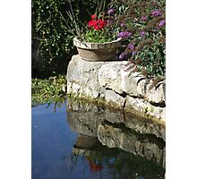 Garden Reflection Photographic Print