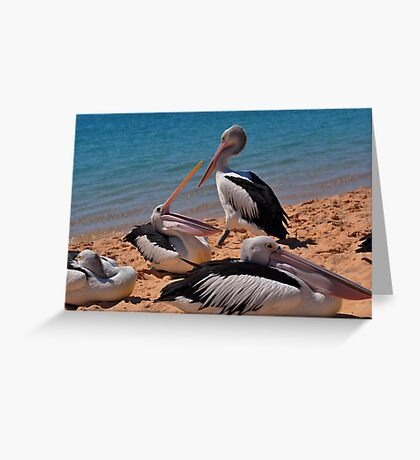 Pelicans of Monkey Mia Greeting Card