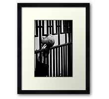 OnePhotoPerDay Series: 270 by L. Framed Print