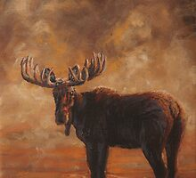 Morning Mist - Moose by john mcfaul