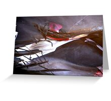 Whale: Abstract Greeting Card