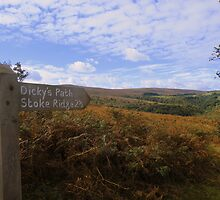 Exmoor: Dickey's Path by Rob Parsons