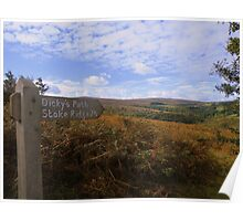 Exmoor: Dickey's Path Poster