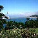 Baker Beach Fog by Tama Blough