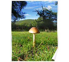 Exmoor: Standing Proud Poster