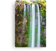 Queen Mary Falls Canvas Print
