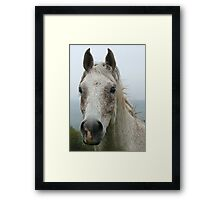 Vadan And A Foggy Backdrop Framed Print