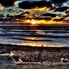 Surf's up Bude by Luke Stevens