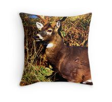 The Magestic Throw Pillow