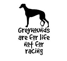 Greyhounds are for life not for racing Photographic Print
