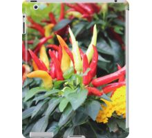 Red chili pepper  iPad Case/Skin