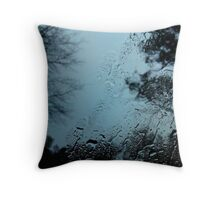 The somber lunchtime retreat Throw Pillow