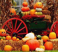 autumn scene by Rachel Williams