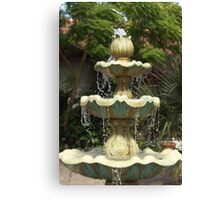 Fountain Drops Canvas Print