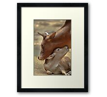 Mom & Newborn in a Blissful Moment Framed Print