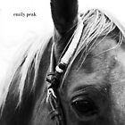 Listen by Emily Peak