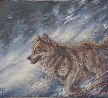 Predatory Flash by john mcfaul