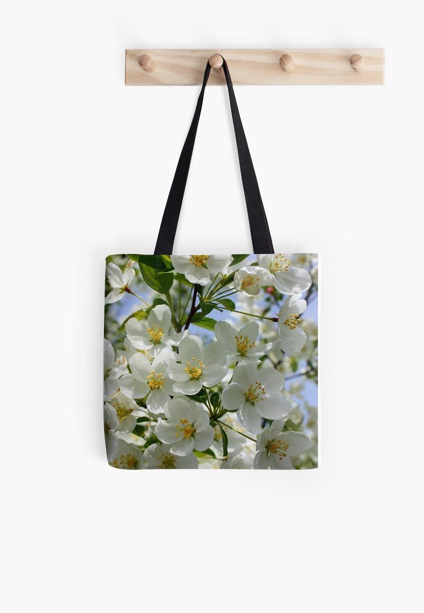 Spring Blossoms by Rachel Stickney