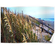 row of stairs over the dunes - nags head Poster