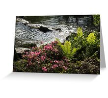 Silver River, Wild Rhododendrons and Bright Green Ferns Greeting Card