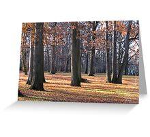 Trees of Autumn III Greeting Card