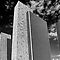 Albany Plaza_BW by barkeypf