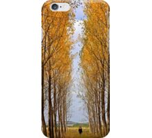 First autumnal colors iPhone Case/Skin