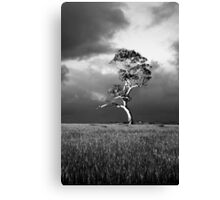 Before the Storm in Monochrome Canvas Print