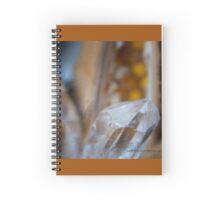 Crystal Pod © Vicki Ferrari Spiral Notebook