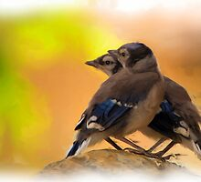 Baby Jay's - Digital Oil Painting by JamesA1