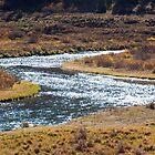 A River Runs Through It by Mitchell Tillison