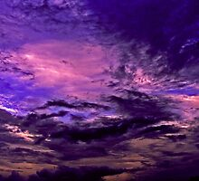 Purple Sky by Christina Sauber