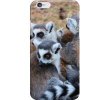 Lemur Huddle iPhone Case/Skin