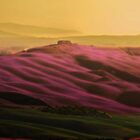The Purple Hills of Kurkanova by LarsvandeGoor