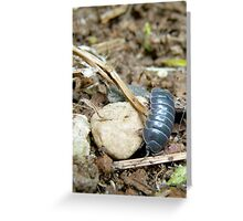 clumsy in armour Greeting Card