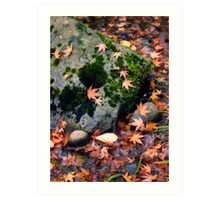 Fall Leaves and Mossy Rock Art Print
