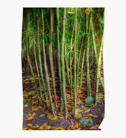 Bamboo with Autumn Leaf Confetti Poster