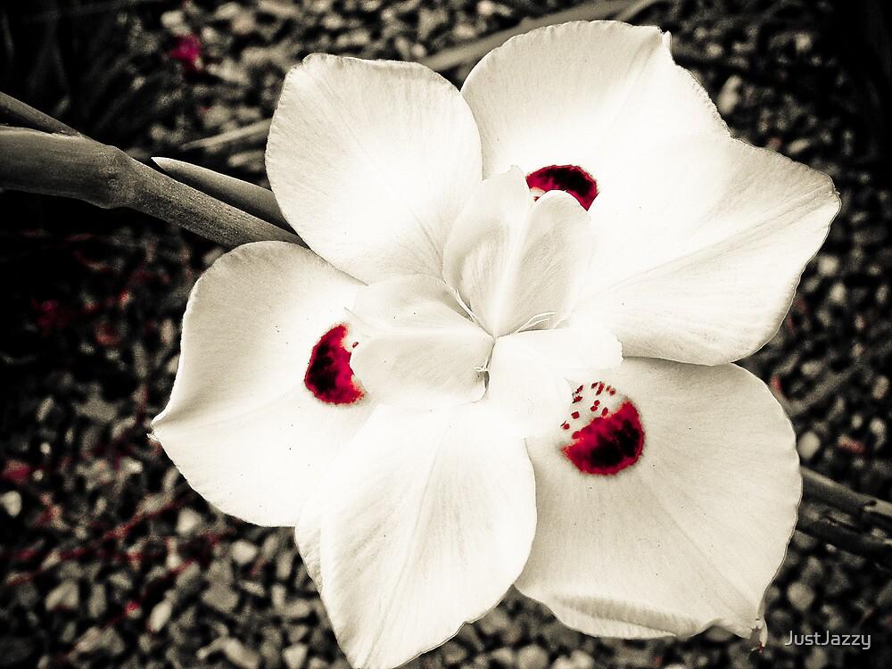 'strawberry blossom  by JustJazzy