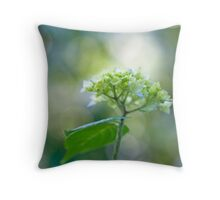The Light in you Throw Pillow