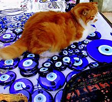 Cat Snapped!   (on a market stall in Istanbul!) by Rusty  Gladdish